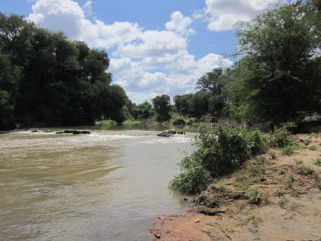 River flowing from South Africa