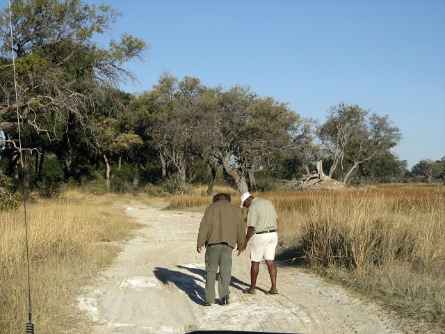 Dedicated trackers checking the leopard tracks