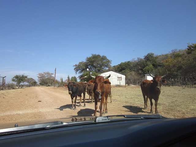 Who has the right of way?